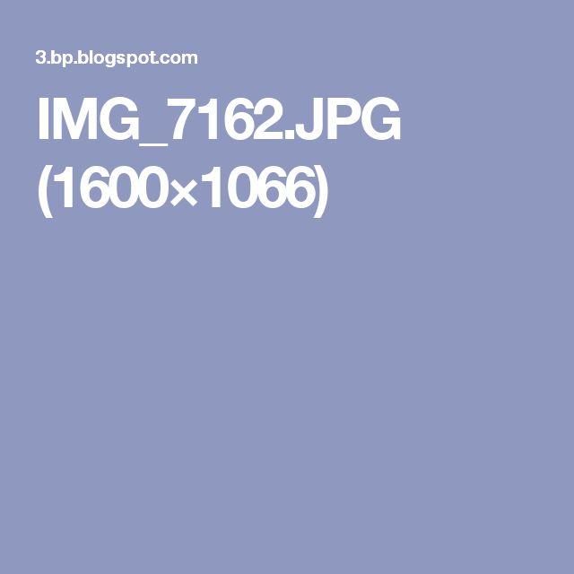 IMG_7162.JPG (1600×1066)