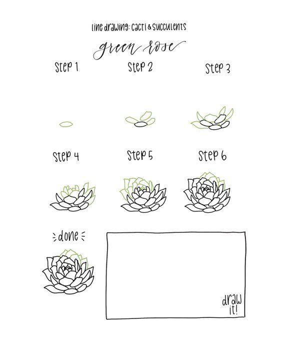 botanical line drawing pdf free download