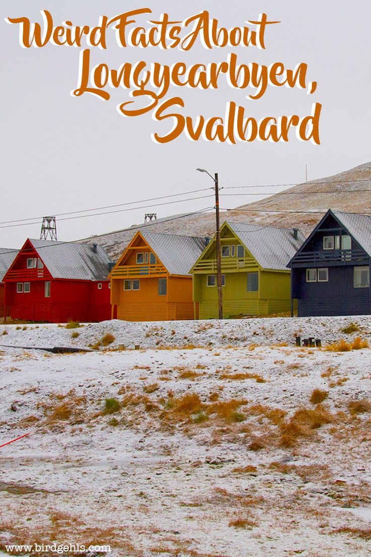 Longyearbyen might just be one of the strangest and simultaneously most delightful towns in the world. Here are 14 facts about Svalbard's capital, which is a part of Norway.