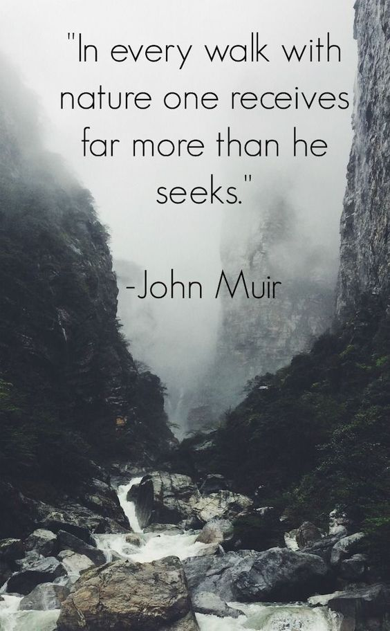 In every walk with Nature one received far more than he seeks. - John Muir, 1838-1914, Scottish-American naturalist, author, environmental philosopher and early advocate for the preservation of wilderness in the United States.