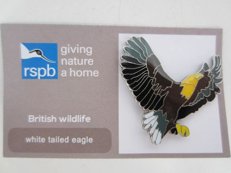 Charity pin badge rspb enamel giving nature a home white tailed eagle wildlife