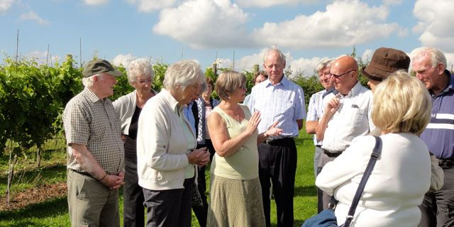 Tours at Ryedale Vineyards