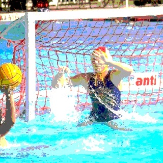 Water polo, Waterpolo