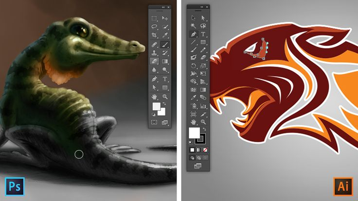 Photoshop and Illustrator are two of Adobe's most popular graphics programs. Discover which one you should be using for your next graphic design project.