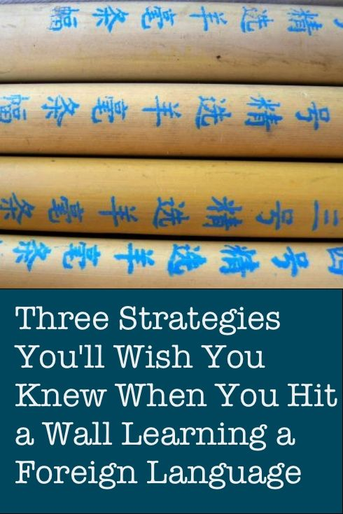 Field Report: Three Strategies You'll Wish You Knew When You Hit a Wall Learning a Foreign Language by Fluent Language Tuition