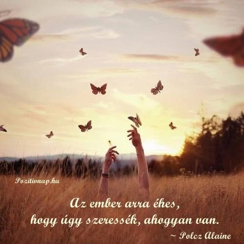 Polcz Alaine idézete az elfogadásról. A kép forrása: Pozitív Nap
