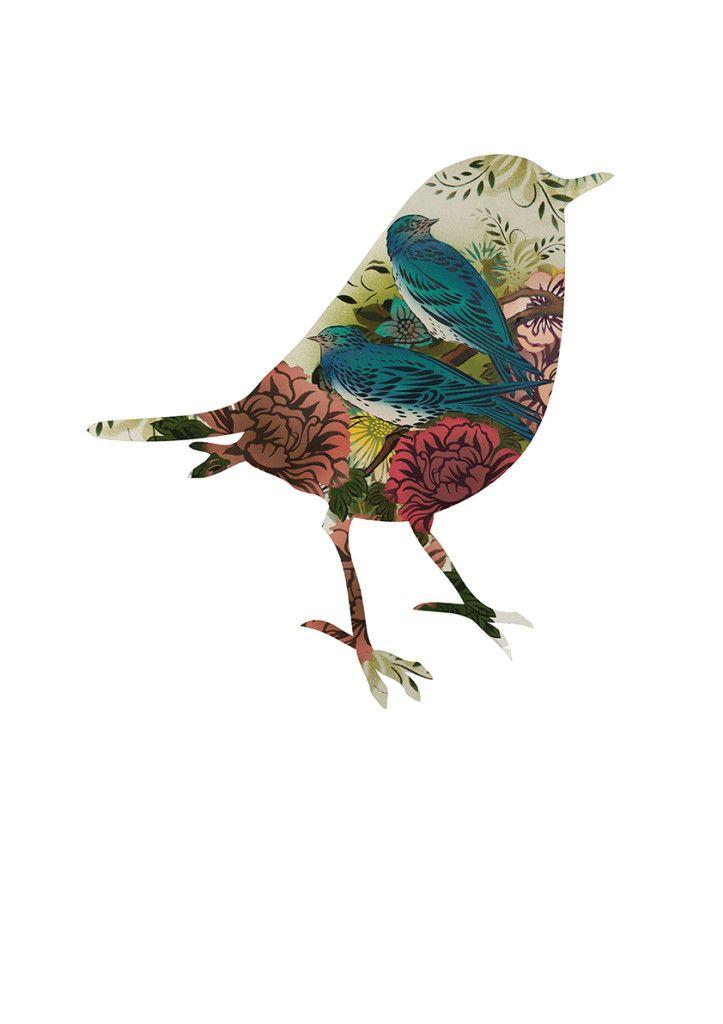 12 Best Images About Maori Birds On Pinterest Maori