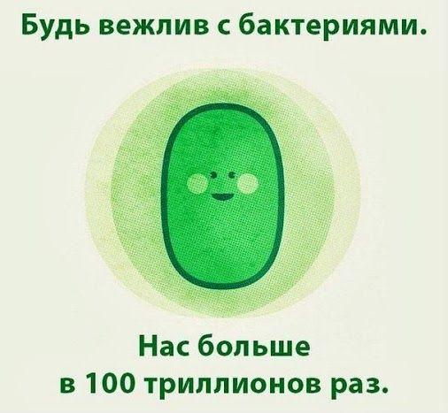 бактерии рулят