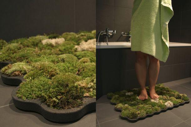 Mohaszőnyeg | Moss carpet Forrás/Resource: thespiritscience.net
