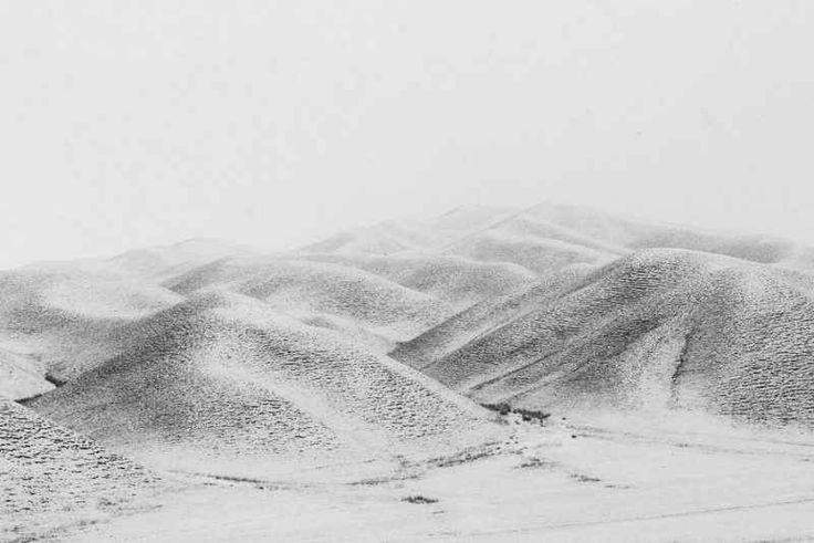 Il vincitore assoluto del Sony World Photography Award 2017 «La natura subisce una forte trasformazione quando arriva l'inverno: la neve e il ghiaccio iniziano a dominare sul paesaggio e uomini e animali devono affrontare condizioni climatiche estreme. La ser #fotografia #concorso #sony
