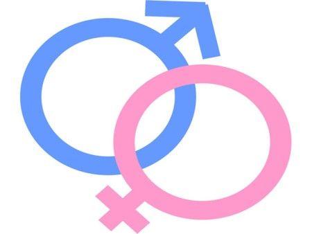 """Organización Panamericana de la Salud, planteó que """"para posibilitar conductas saludables, placenteras y responsables en materia de educación sexual"""