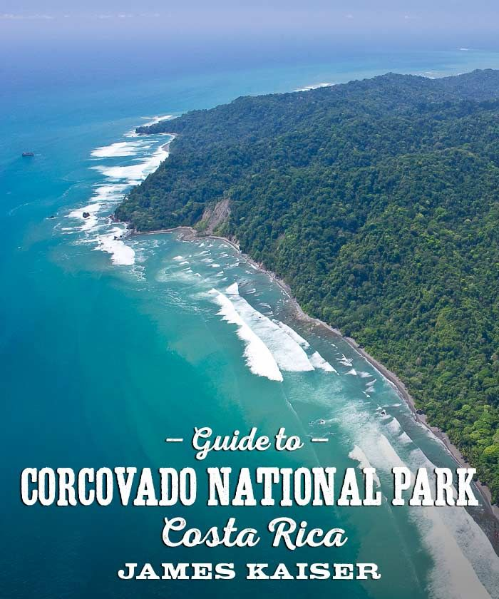 Complete guide to Corcovado National Park, Costa Rica. Hiking, boat trips, wildilfe and more!
