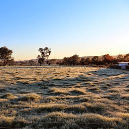Winter has certainly arrived in the King Valley.  It's cold but there's plenty of opportunity for taking beautiful pics!!