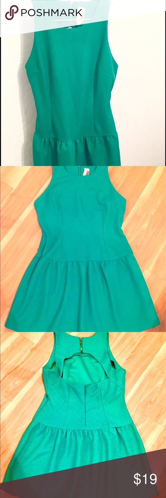 Francesca's Collections Kelly Green Mini Dress - L Very cute Kelly Green mini dress from Francesca's Collections.  Hits about mid thigh on me and I am 5'2.  Very nice material not stretchy and has a cut cut out and dual zipper look.  Size large and only worn a few times. Francesca's Collections Dresses Mini