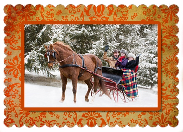 Holiday Cards with wonderful setting. Laurie Schneider Photography, Stillwater MN. Proceeds benefit rescued horses.
