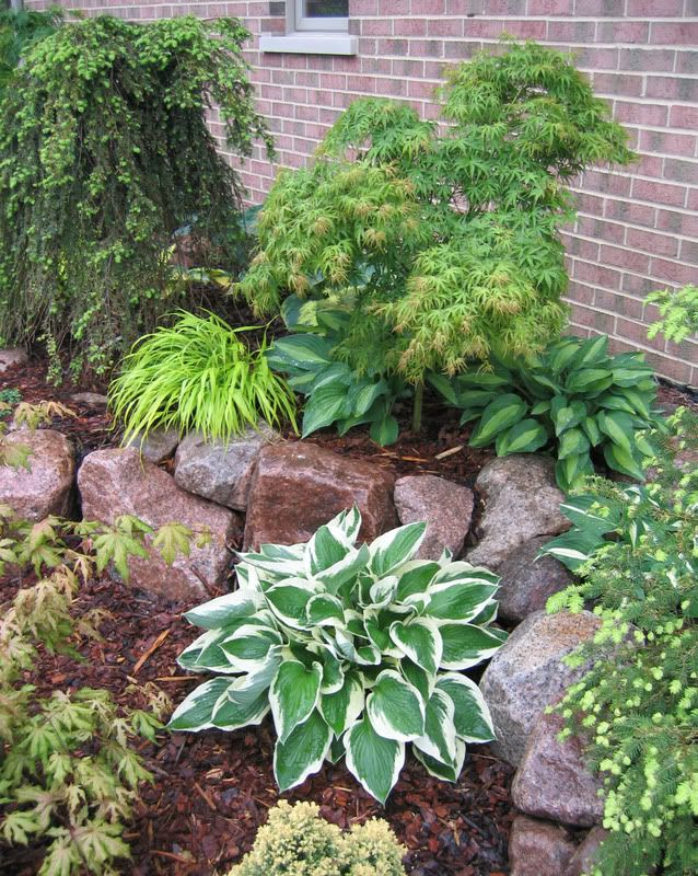 Front yard landscaping idea! This looks like a good shaded area plan. Love the use of rocks.
