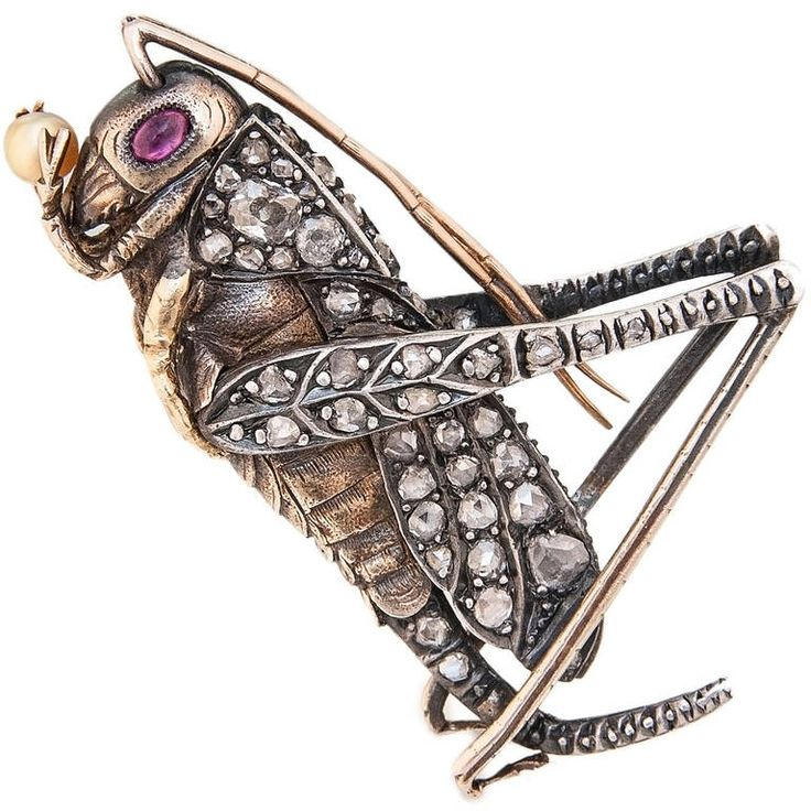 Gem Set Pearl Silver Yellow Gold Grass Hopper Brooch circa 1910. Circa 1910 Silver and Yellow Gold 2 sided Grass Hopper Brooch, extremely well detailed and set with Old Mine Cut and Rose cut Diamonds, Ruby Eyes and Holding a natural Pearl. Measuring 2 inch in length.: