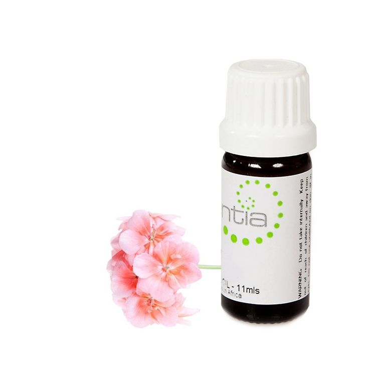 Geranium Essential Oil will cheer you up in no time with its sweet musky rose scent and stress relieving properties.