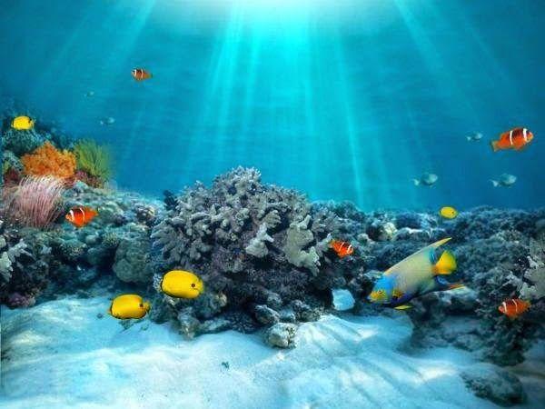 """Η ΔΙΑΔΡΟΜΗ ®: Τεράστιοι """"ωκεανοί"""" στα βάθη της Γης"""