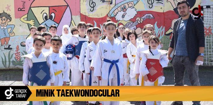 Minik Taekwondocular İzleyenleri Hayrete Düşürdüler