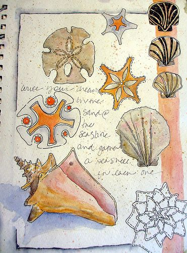 Sketchbook shells by Jane LaFazio is an example of drawing on the beach. What fun for the art camp summer program
