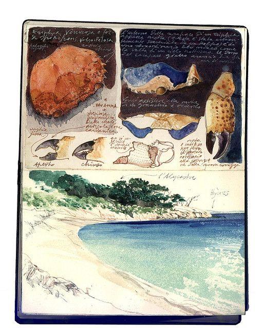 Stefano Faravelli . sketchbook