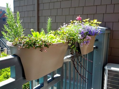 Amazing Just Because You Live In An Apartment Doesnu0027t Mean You Canu0027t Have. Balcony GardeningContainer  GardenSmart ...