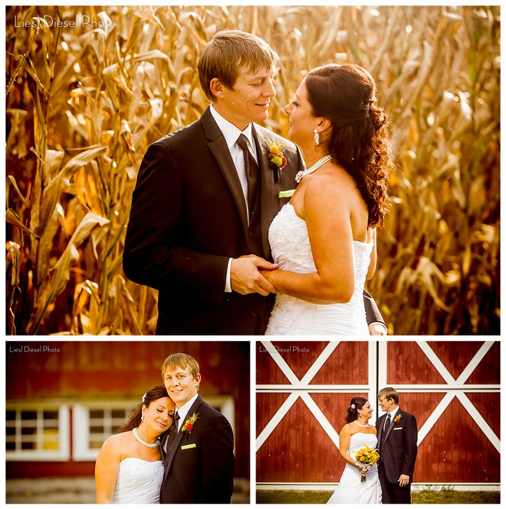 affordable wedding photographers in los angeles%0A Rustic Fall Themed Outdoor Country Wedding photography by Liesl Diesel  Photo Los Angeles Photographer autumn color palette yellow navy red orange  pumpkins