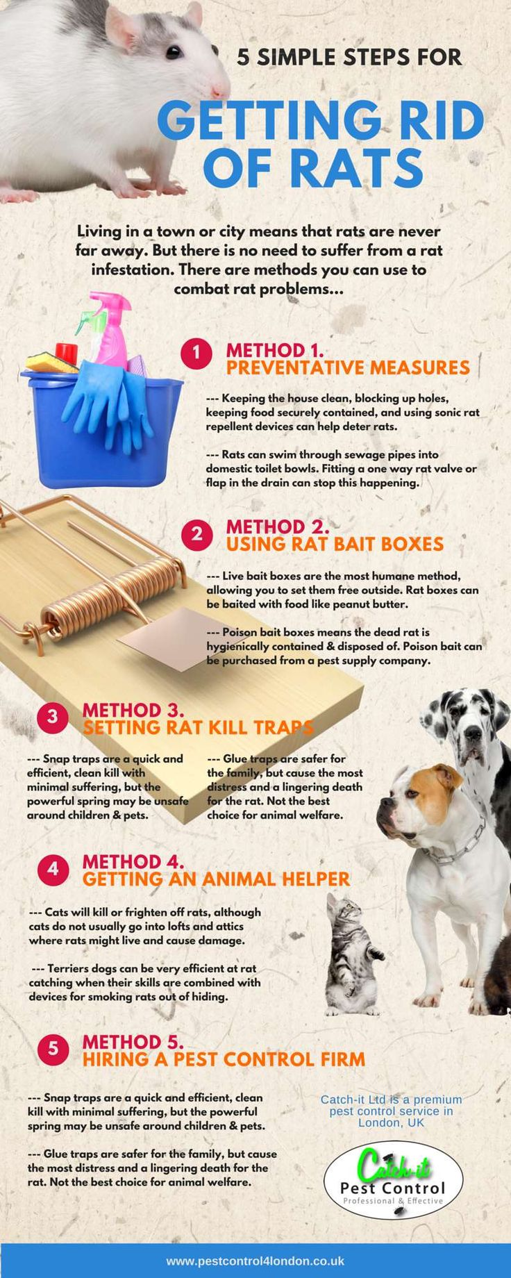 the 25+ best rat infestation ideas on pinterest | interesting fun