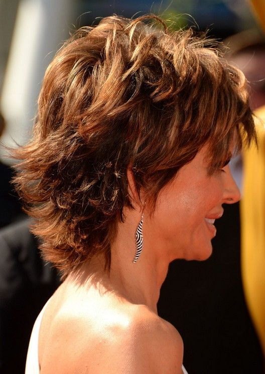 Lisa Rinna Hair Pictures Back View | Layered Hairstyle for Thick Hair: Side View of Lisa Rinna's Hairstyle