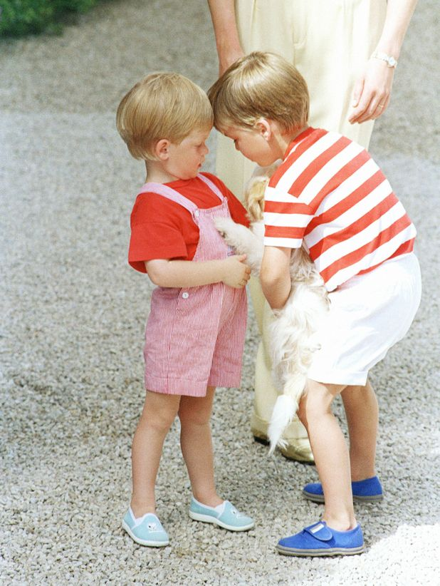 Prince Harry and Prince William play with a dog together at the Mediterranean holiday palace of the King Juan Carlos of Spain in Majorca in 1987.