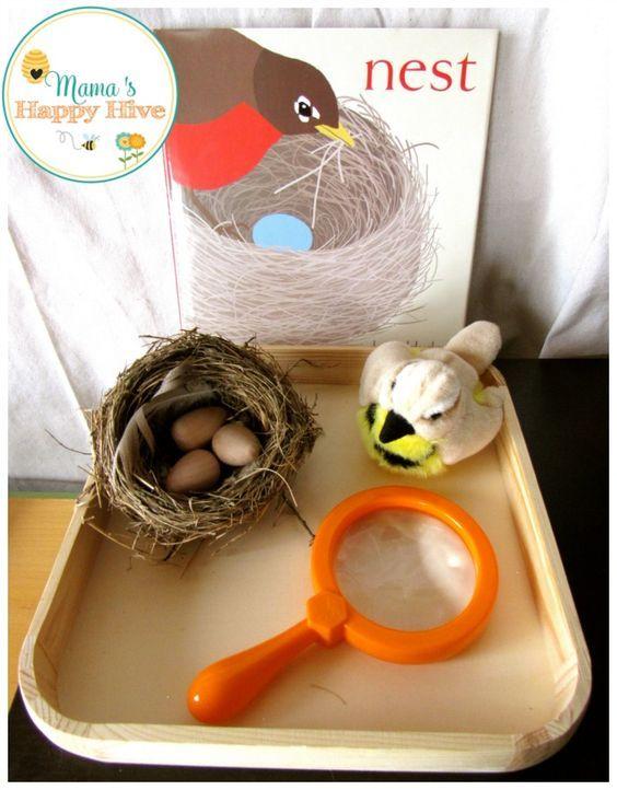Montessori Inspired Bird Unit includes life-cycle of birds, Montessori bird puzzle, examining a nest, DIY bird feeder, pre-reading work, and practical life. - www.mamashappyhive.com