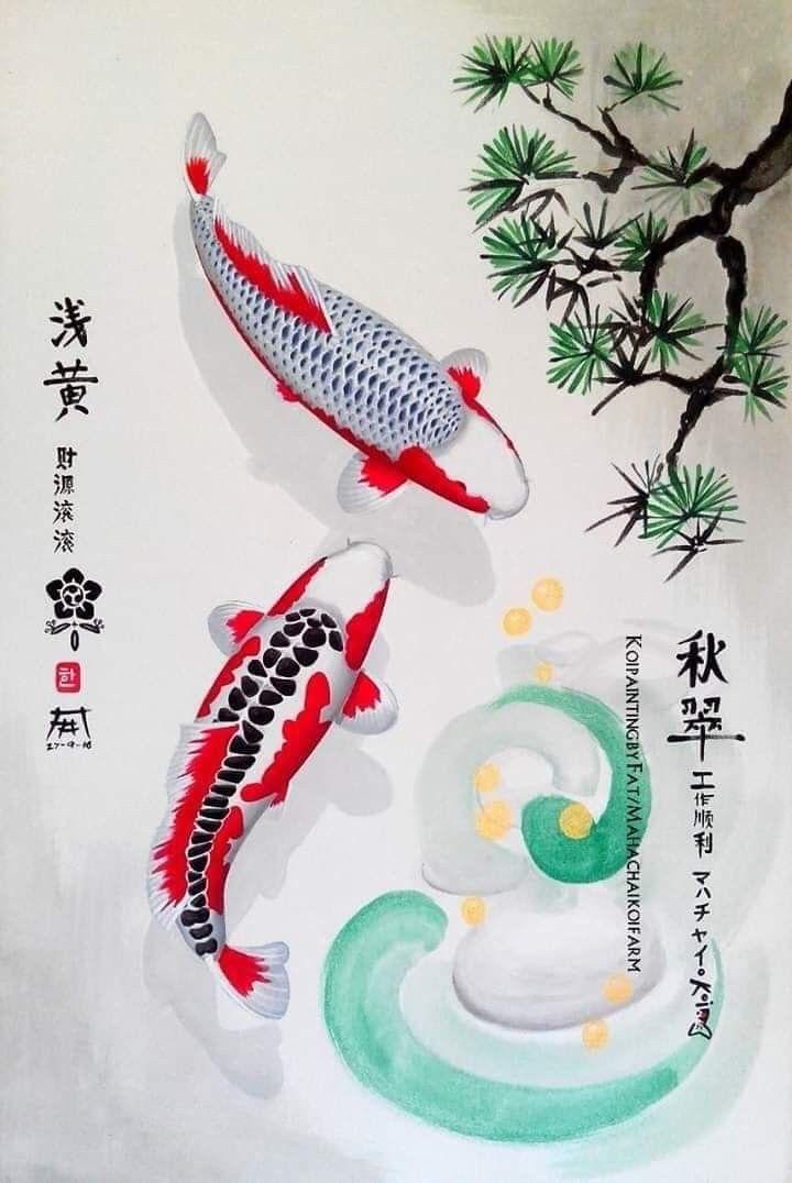 Pin Oleh Sahar Di Koi Seni Jepang Ikan Hewan