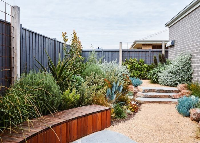 Phillipwithers Torquay Ameliastanwix Web 118 1000 In 2020 Australian Garden Design Modern Australian Garden Backyard Landscaping Designs