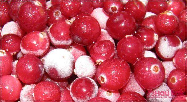 Как заготавливать ягоды на зиму?