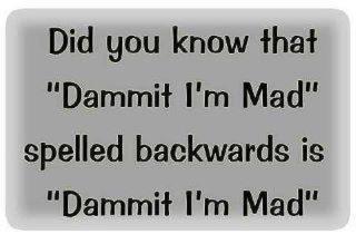 Dammit I'm Mad