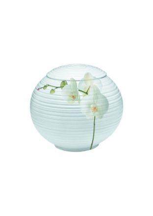 Porseleinen urn Orchidee