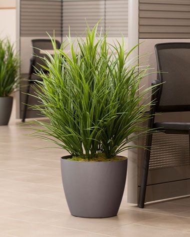 Delightful Grass Plant Artificial Floor Plant