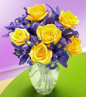yellow rose-wedding color  purple iris- purple wedding color flower is for 25 years.