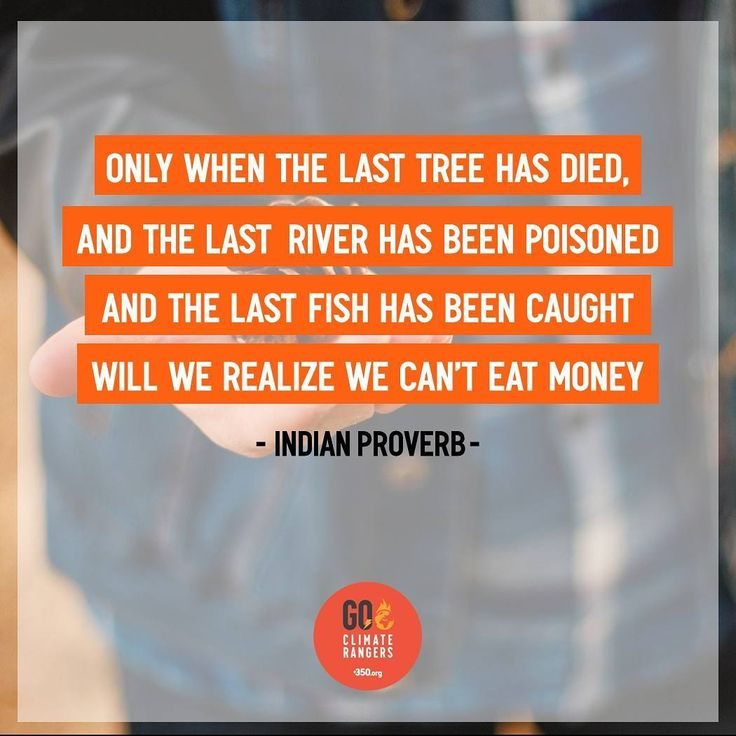 The cost of our success is the exhaustion of natural resources which leading to energy crisis climate change and habitat's destruction. If you exhaust natural resources there will be nothing left for our children.. #bebasenergifosil #fossilfree #energibersih #energiterbarukan #renewableenergy #indonesiaterbarukan #climaterangers