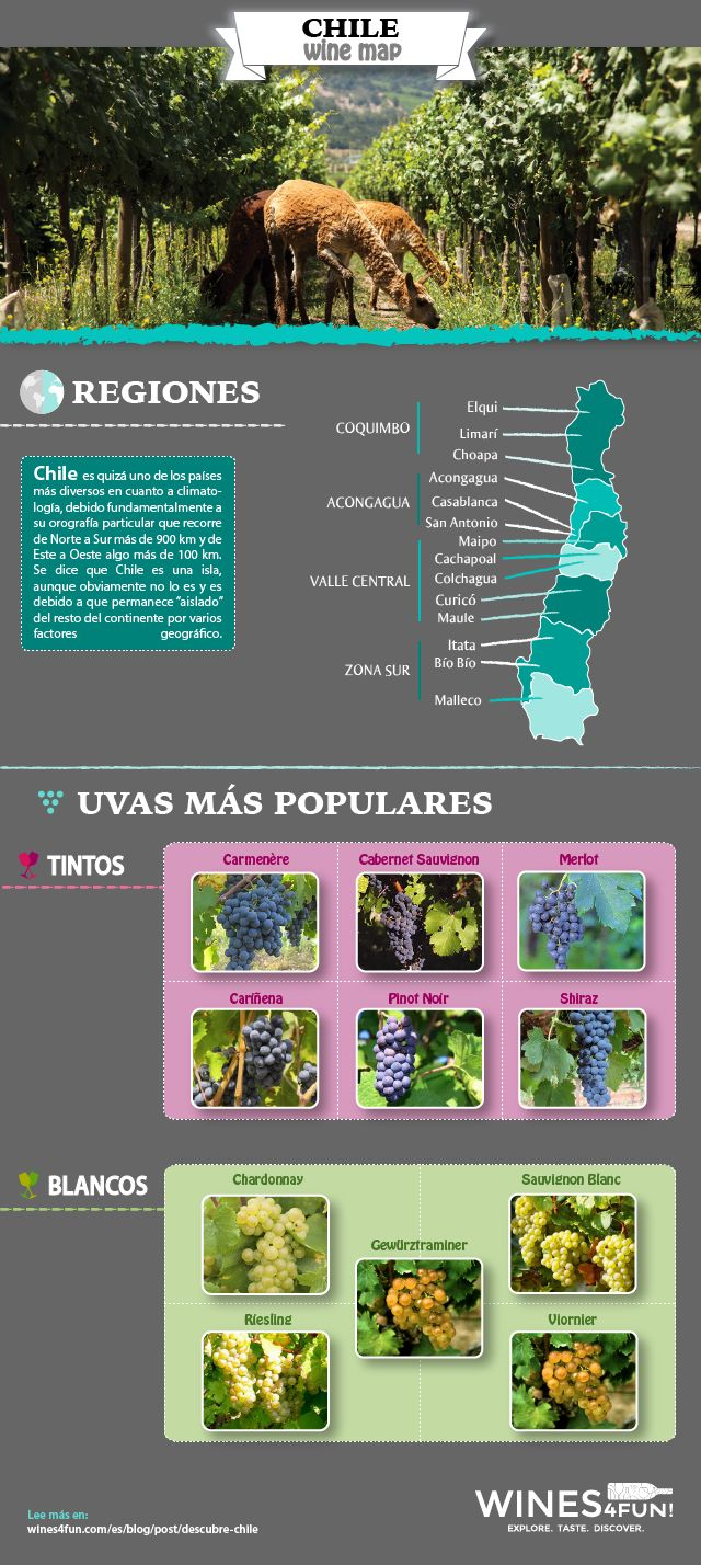 Descubre Chile, sus regiones vitivinícolas y sus vinos. Discover Chile, its wine producing regions and its wines. See more at: https://wines4fun.com/es/blog/post/descubre-chile