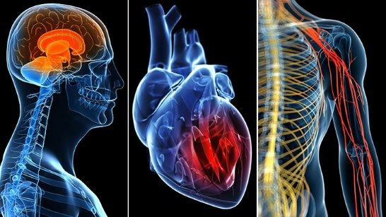Low T affects your whole body. Changing cognition, dry skin, and heart attack all could be signs of low testosterone levels.