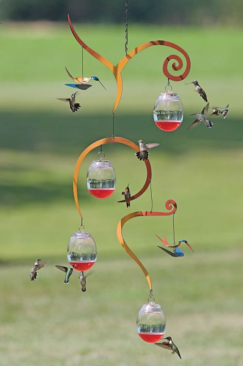 Mobile feeder attracts Hummingbirds