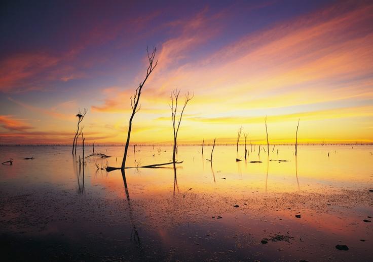 Images of Australia: Lake Gregory, Tanami Desert - Australian Geographic