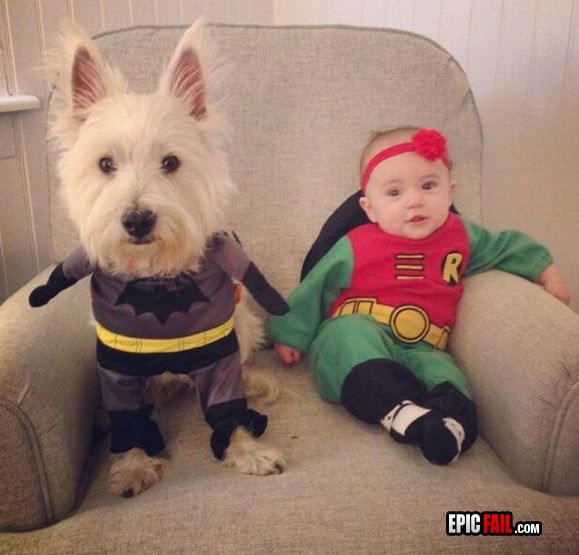 Batman and Robin halloween costume win.