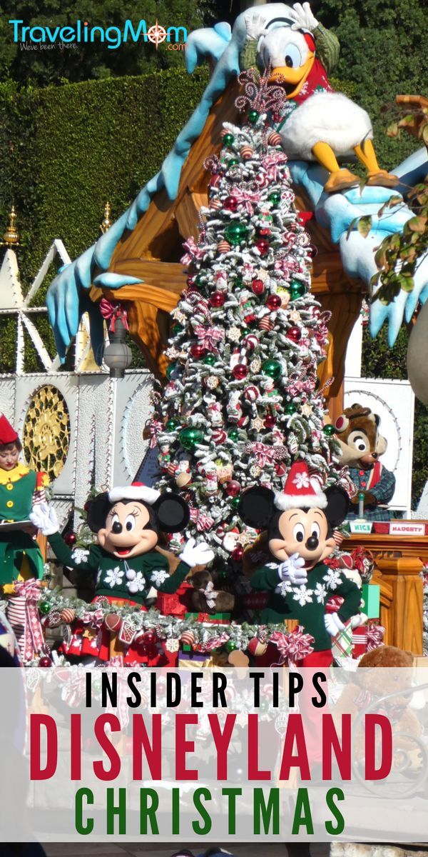 Disneyland insider holiday tips including what to see during your Christmas visit to the Happiest Place on Earth! #TMOMDisney #TMOM