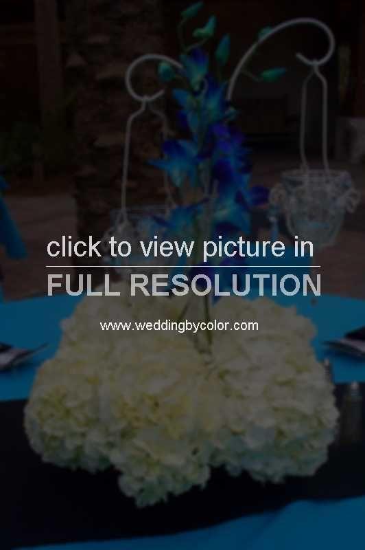 tiff blue orchids2