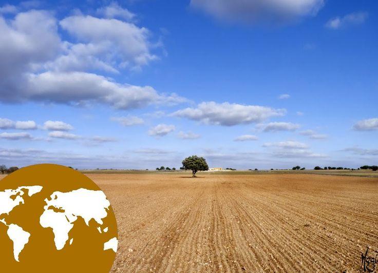 34 best paisajes agrarios de espa u00d1a images on pinterest