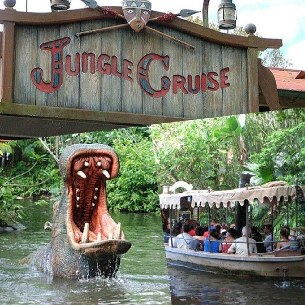 1000 Images About Cool Rides On Pinterest: Best 25+ Disney World Rides Ideas On Pinterest