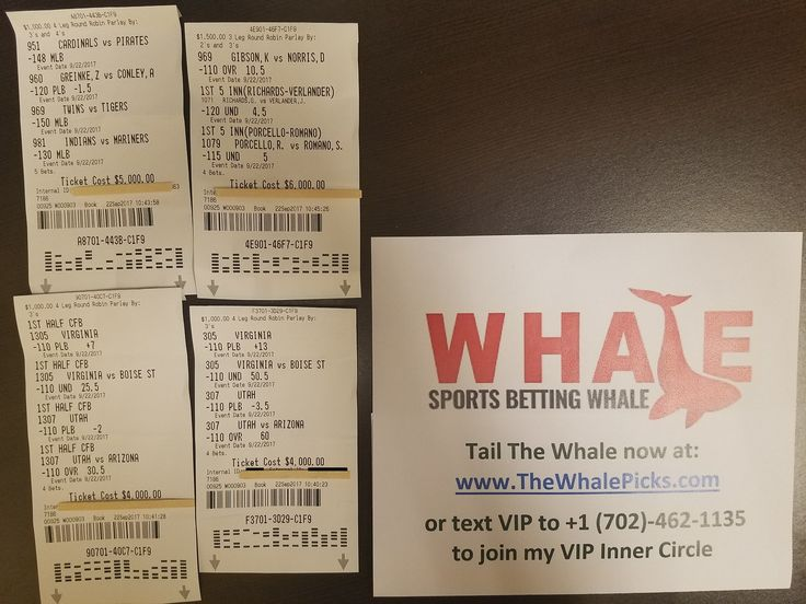 I continue to put my money where my mouth is! Today I bet $19,000 on my picks:  http://www.TheWhalePicks.com/free  #sportspicks #freepicks #sportsbetting #cbb #ncaab #nba #mlb #nfl #gamble #gambling #thewhalepicks #baseball #basketball #football #bet #bets #betting